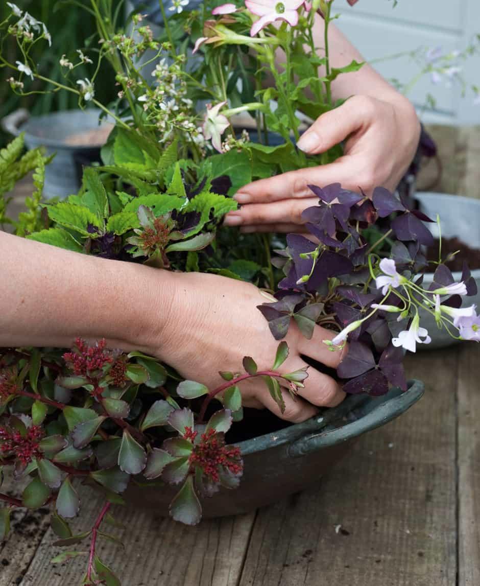 botanical_planter_homestyle_5