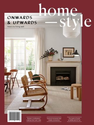 homestyle_issue101