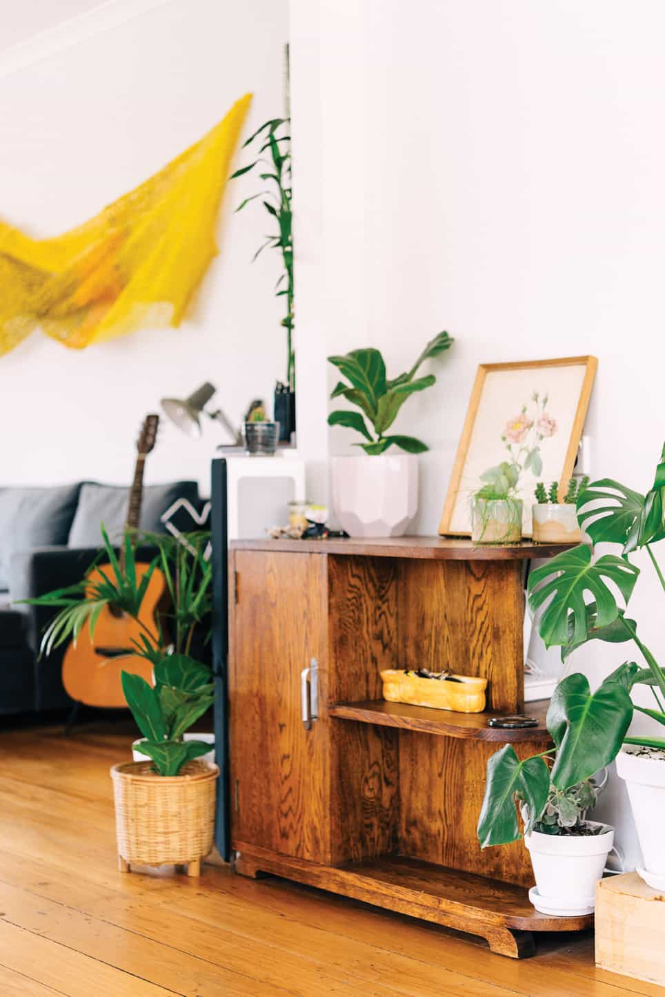 sill life plants homestyle 1